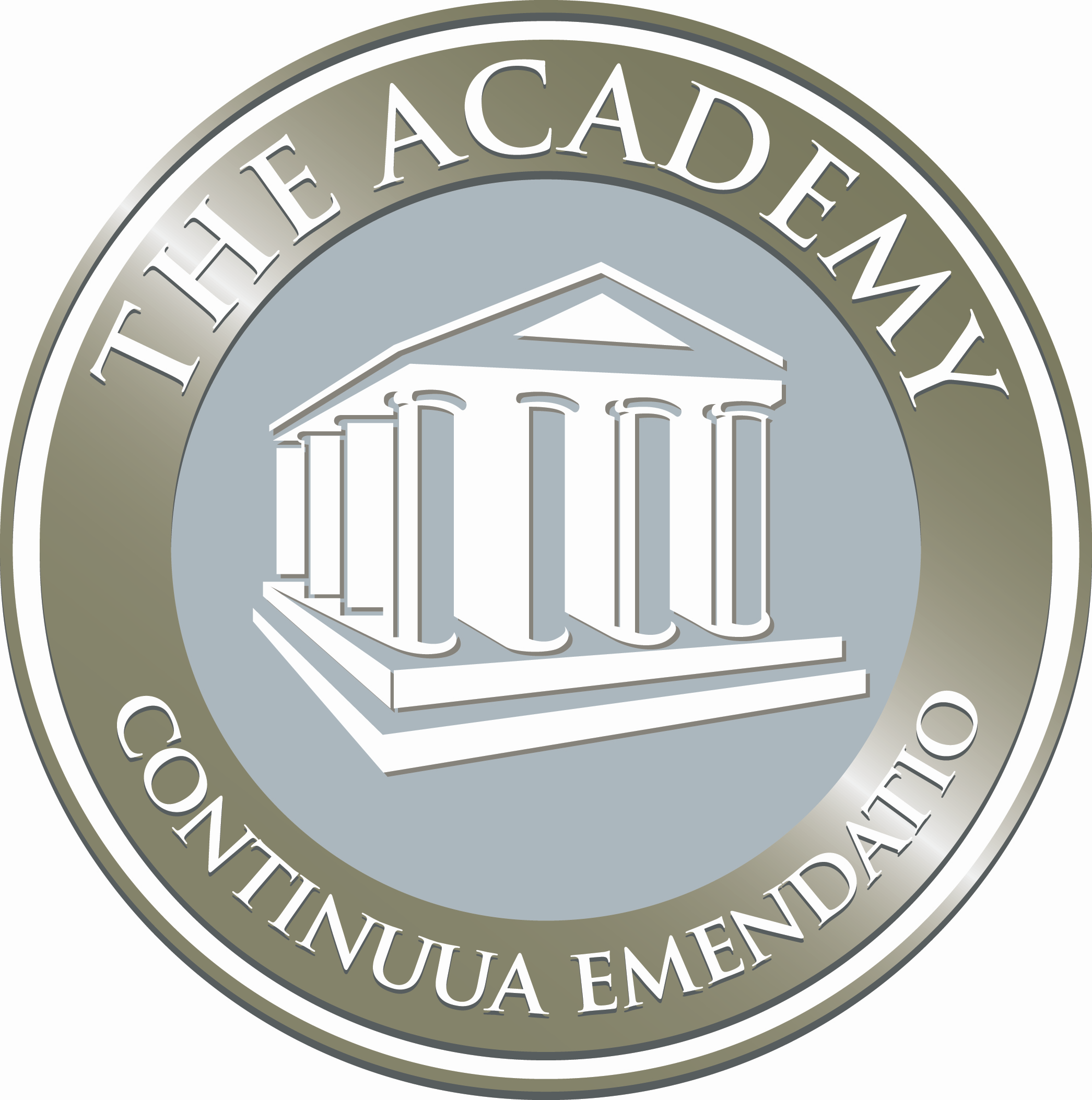The Academy of South SL